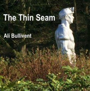 The Thin Seam - alibullivent.co.uk